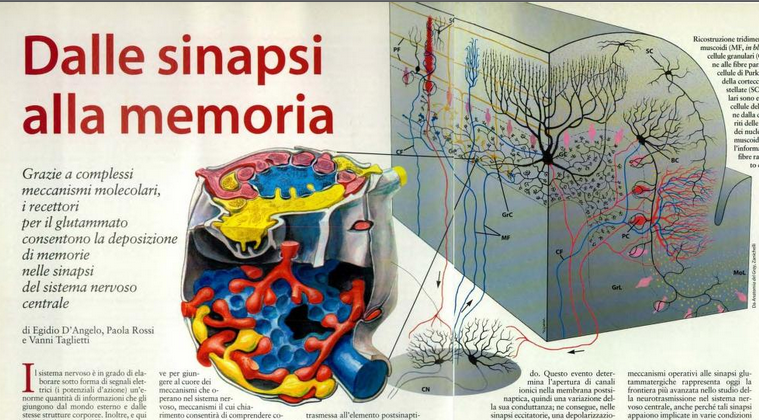 scienze1999
