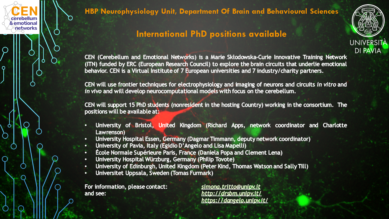 PhD positions available, click on the image below